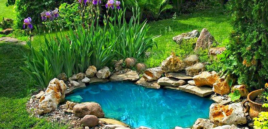 Мини-пруд в саду.