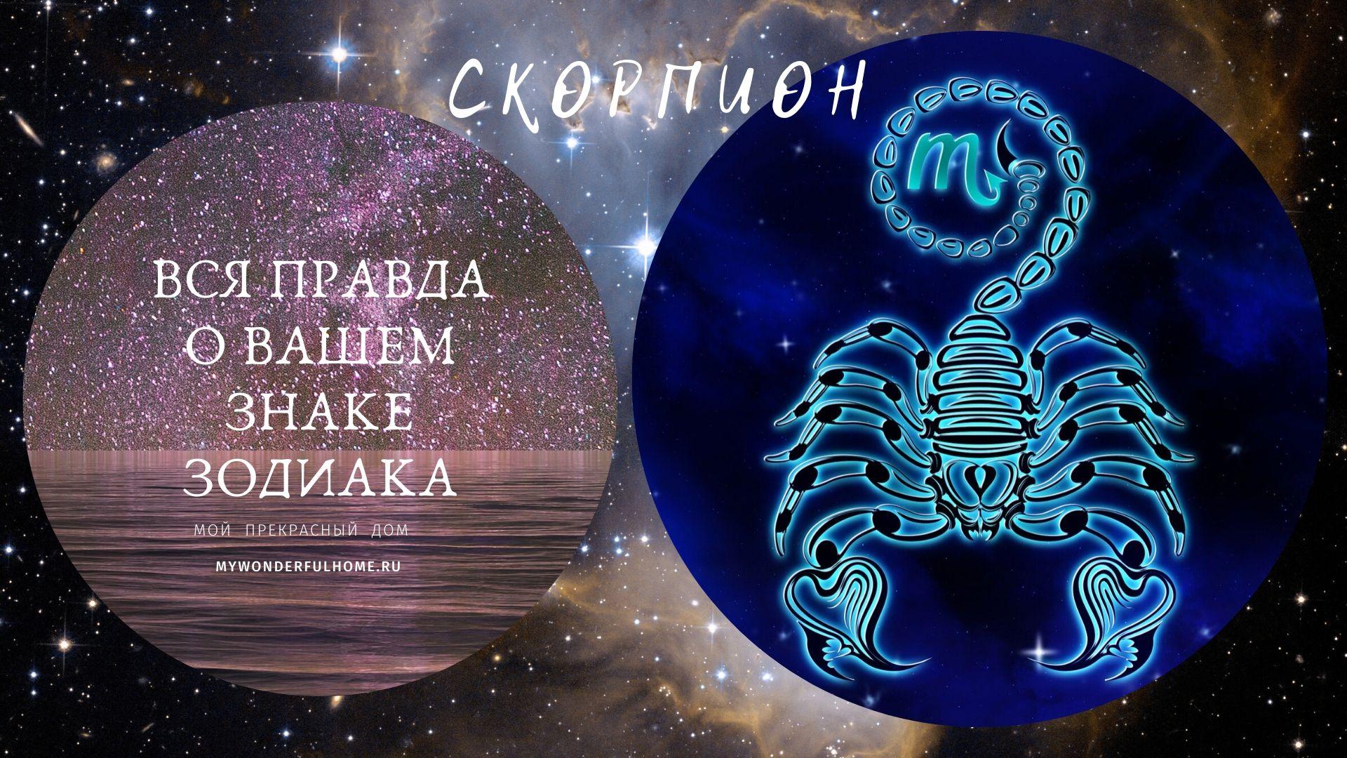 Скорпион Зодиак
